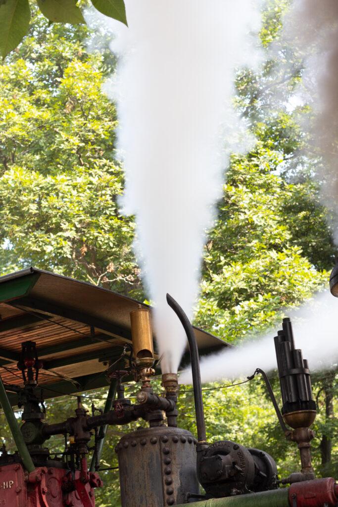 Steam Engine Safety Valve